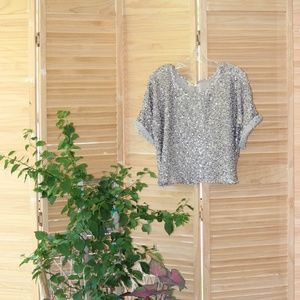 LouLou Taupe Shimmer Sequins Crop Pullover Top S/M